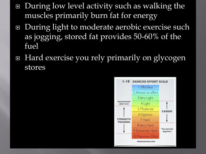 During low level activity such as walking the muscles primarily burn fat for energy