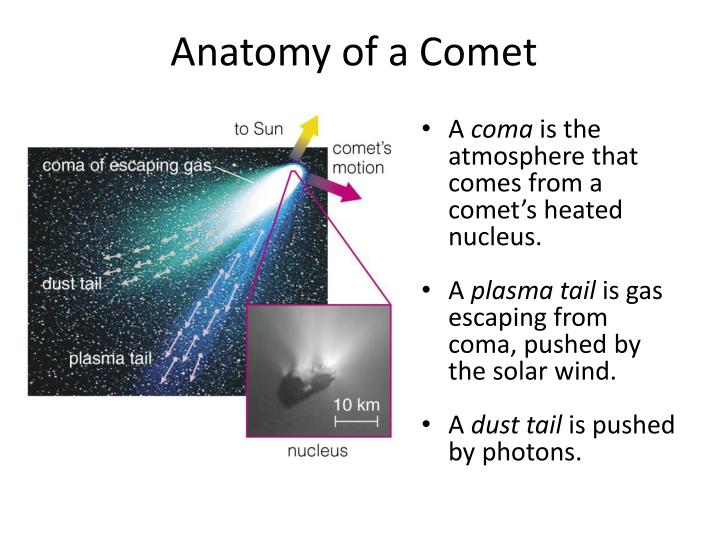 Anatomy of a Comet