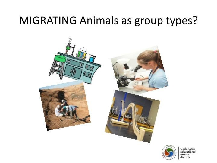MIGRATING Animals as group types?