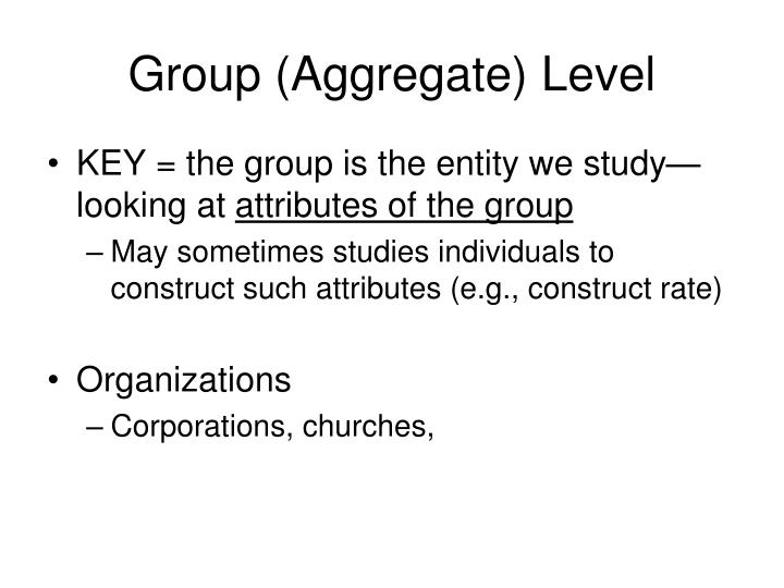 Group (Aggregate) Level