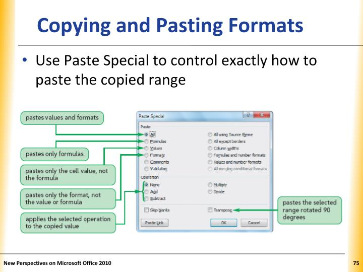 Copying and Pasting Formats