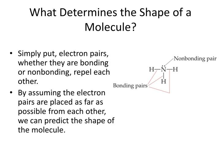 What Determines the Shape of a Molecule?