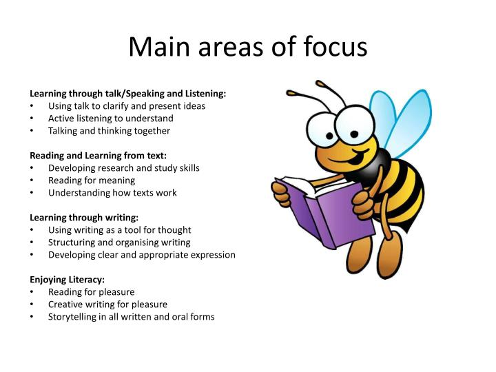 Main areas of focus