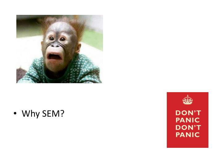 Why SEM?