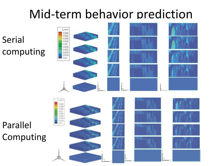Mid-term behavior prediction