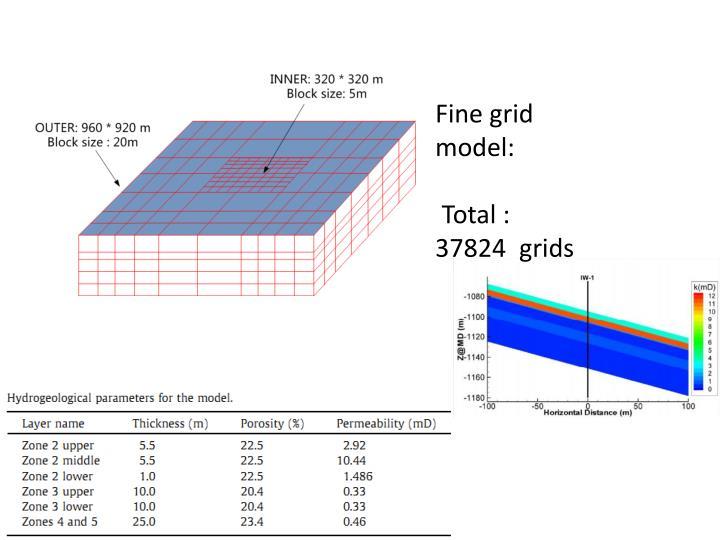 Fine grid model: