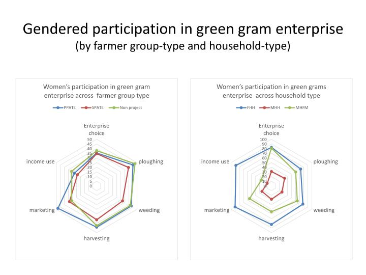 Gendered participation in green gram enterprise