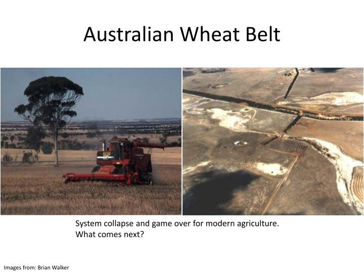 Australian Wheat Belt