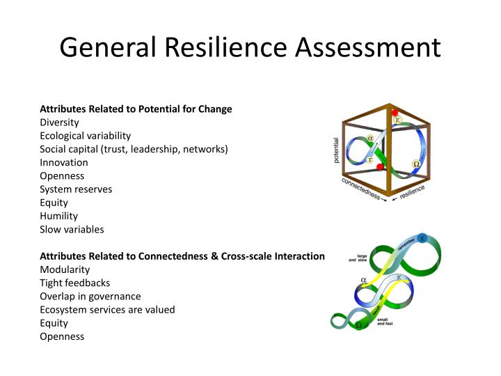 General Resilience Assessment