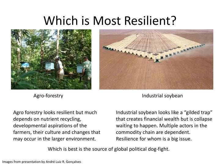 Which is Most Resilient?