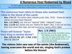 a numerous host redeemed by blood1