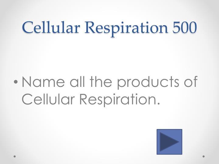Cellular Respiration 5
