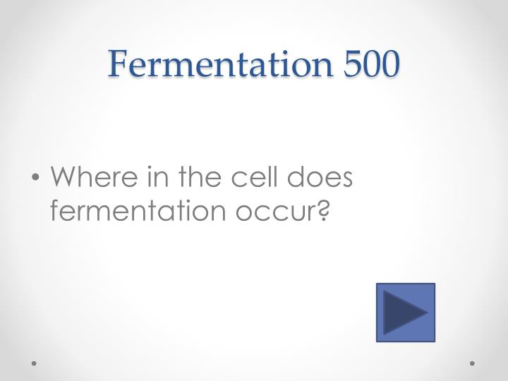 Fermentation 5