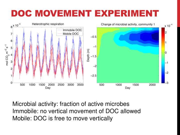 Doc movement EXPERIMENT