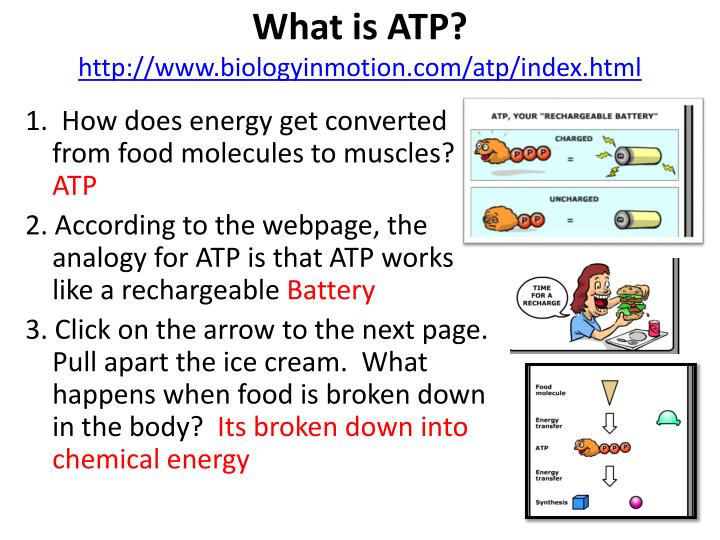Printables Atp Worksheet atp worksheet versaldobip templates and worksheets