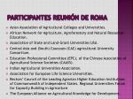 participantes reuni n de roma