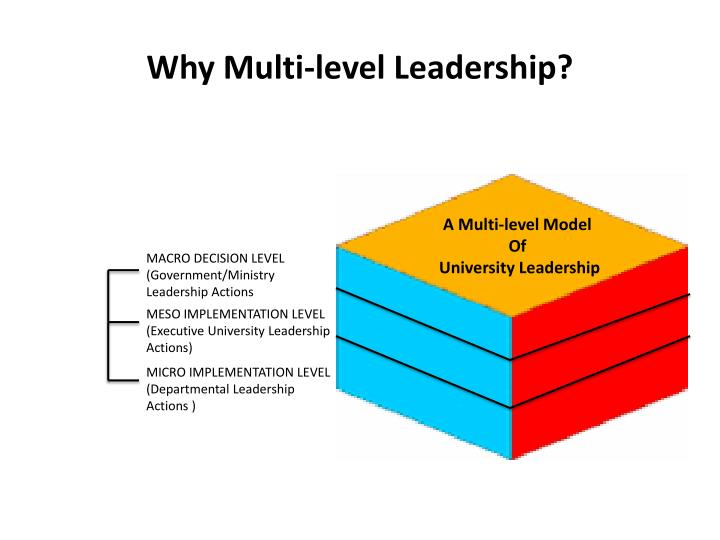 Why Multi-level Leadership?