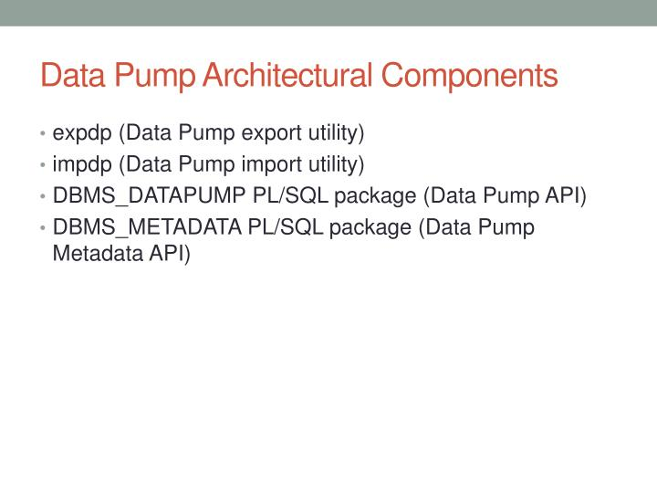 Data pump architectural components