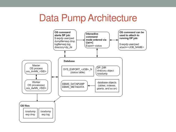 Data Pump Architecture