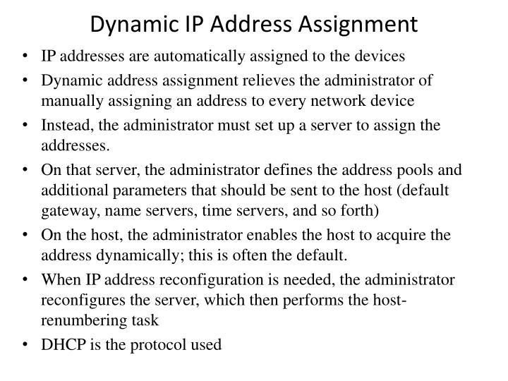 Dynamic IP Address Assignment