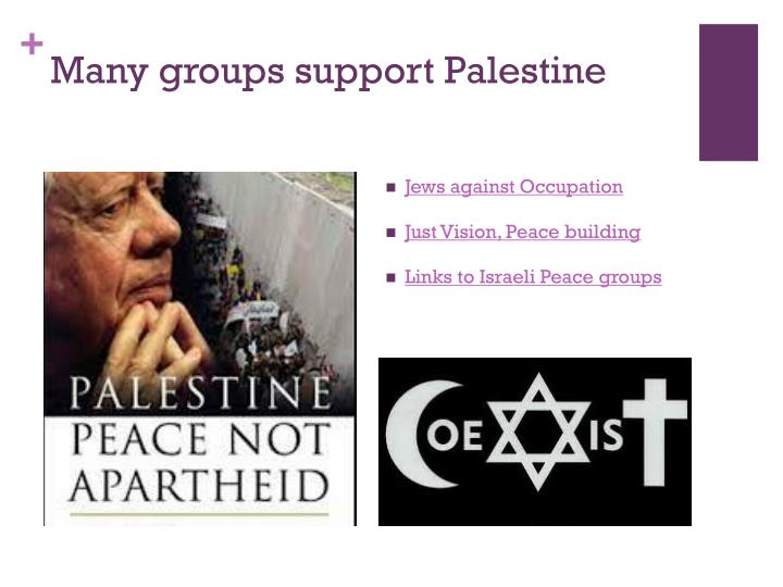 Many groups support Palestine