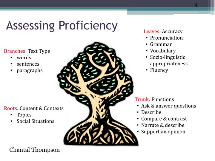 Assessing Proficiency