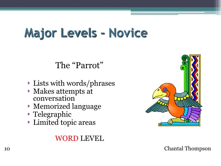 Major Levels - Novice
