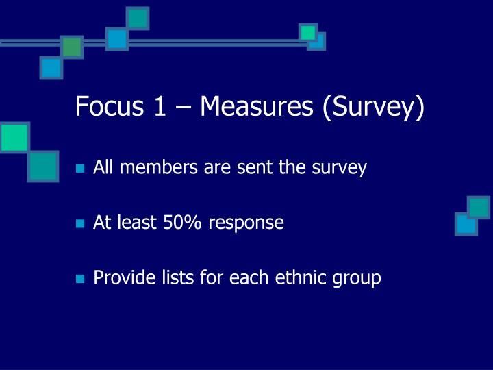 Focus 1 – Measures (Survey)