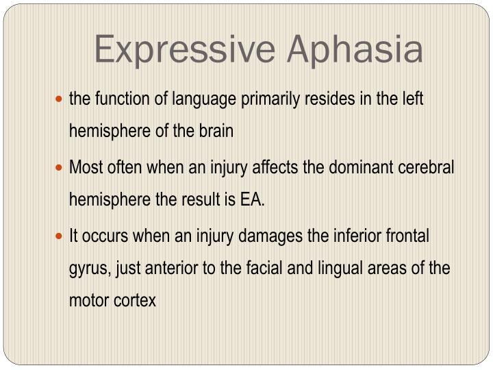 Expressive Aphasia