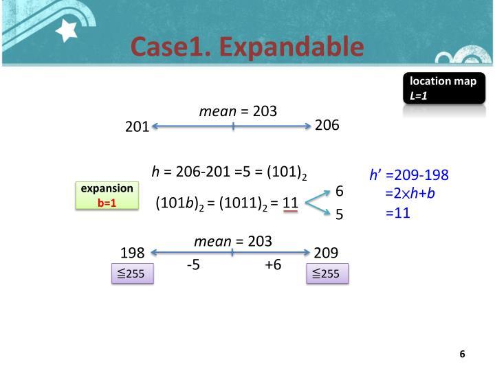 Case1. Expandable