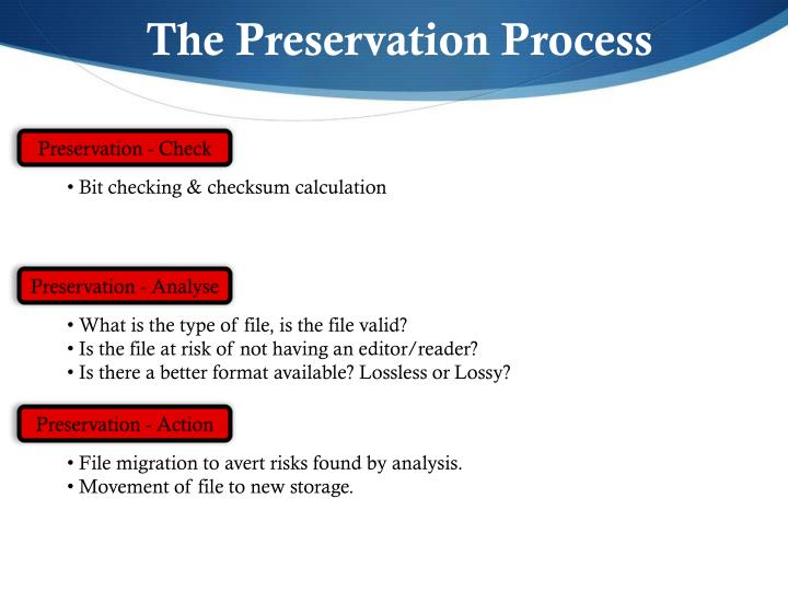 The Preservation Process