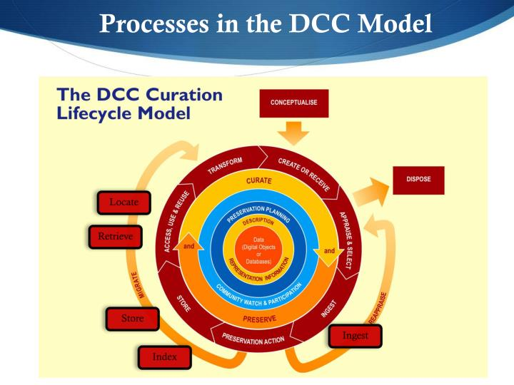 Processes in the DCC Model