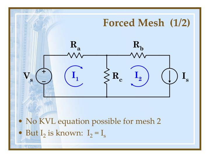 Forced Mesh  (1/2)