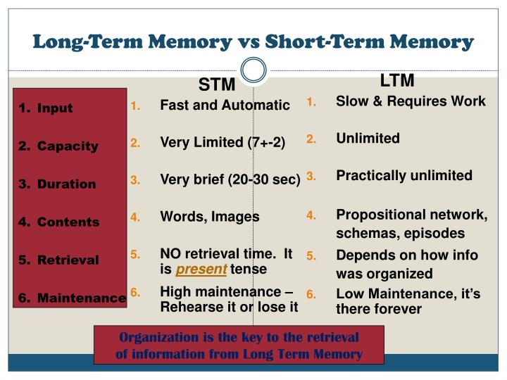 Short Term And Long Term Memory : Information to long term memory pictures pin on