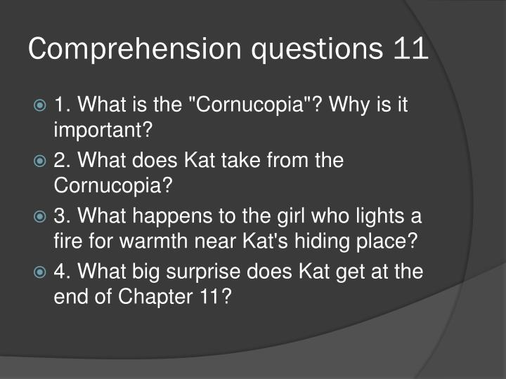 Comprehension questions 11