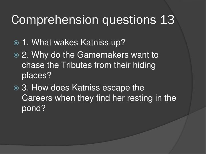 Comprehension questions 13
