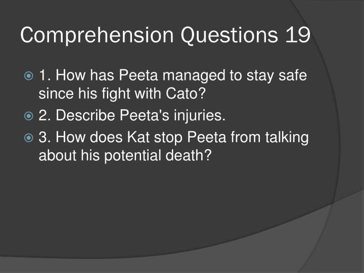 Comprehension Questions 19