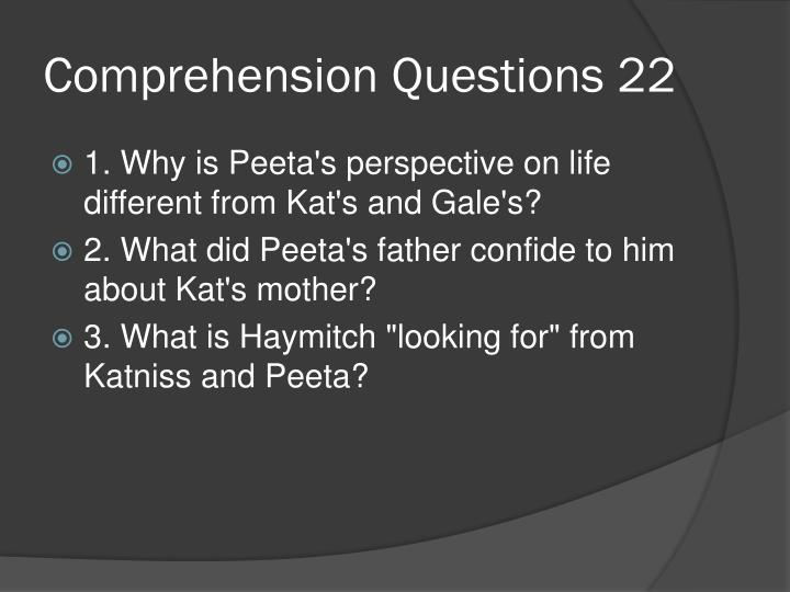 Comprehension Questions 22