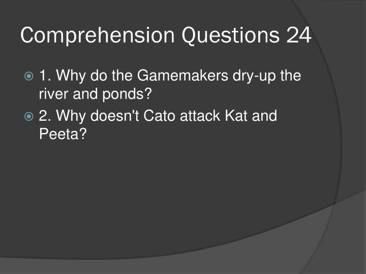 Comprehension Questions 24