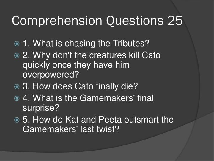 Comprehension Questions 25