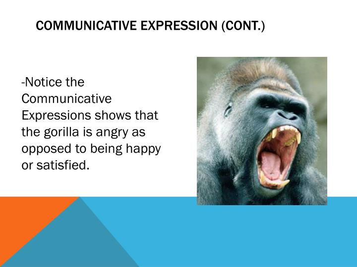 Communicative Expression (Cont.)