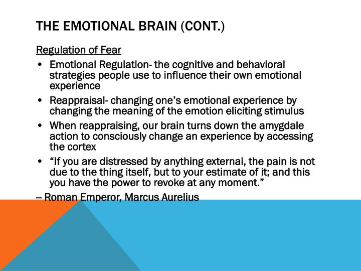 The Emotional Brain (Cont.)
