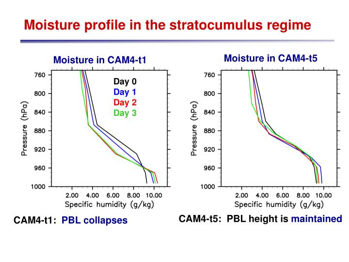 Moisture profile in the stratocumulus regime
