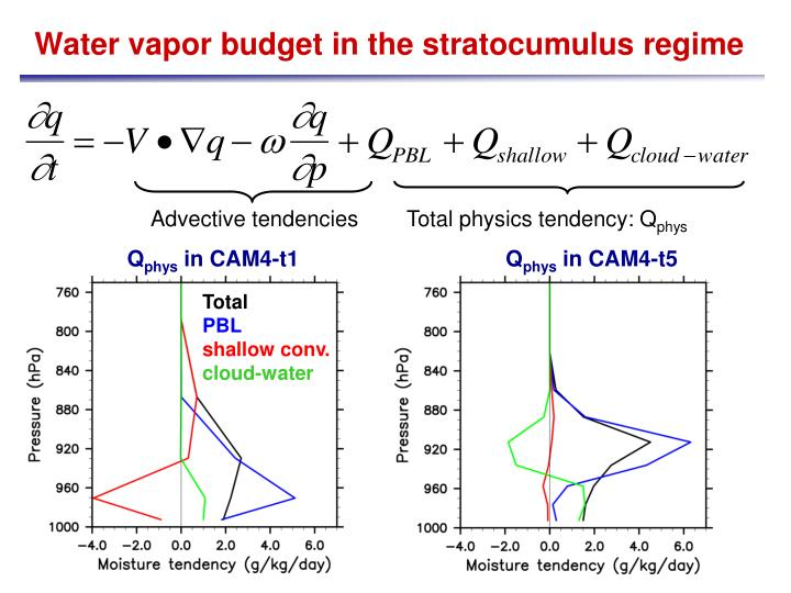Water vapor budget in the stratocumulus regime