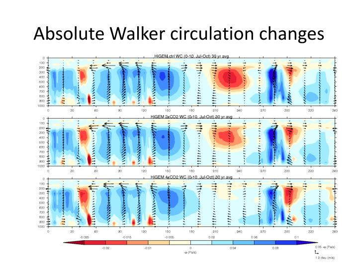 Absolute Walker circulation changes