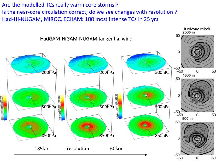 Are the modelled TCs really warm core storms ?