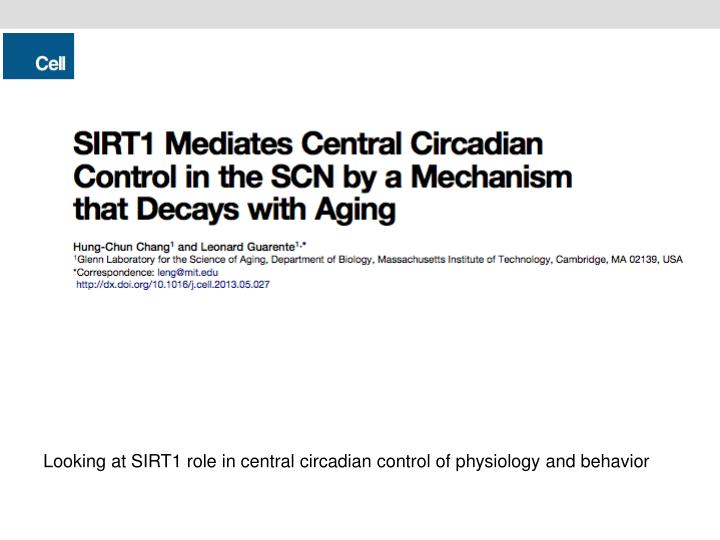 Looking at SIRT1 role in central circadian control of physiology and behavior
