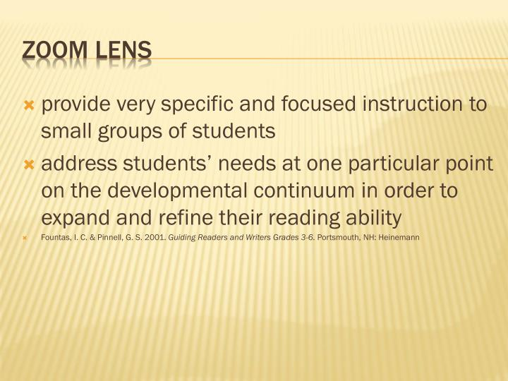 provide very specific and focused instruction to small groups of students