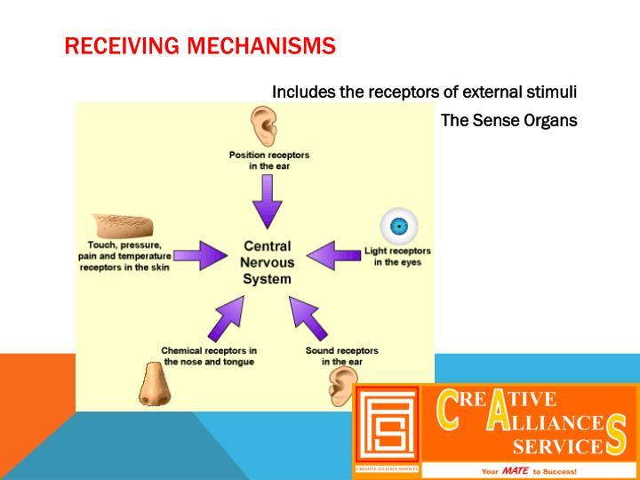 Receiving mechanisms