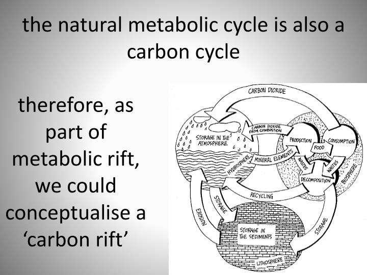therefore, as part of metabolic